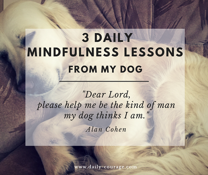 3 Daily Mindfulness Lessons From My Dog
